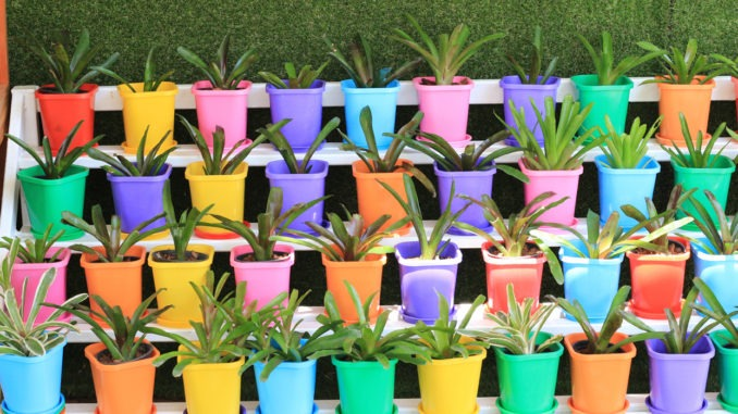 Pots jardin