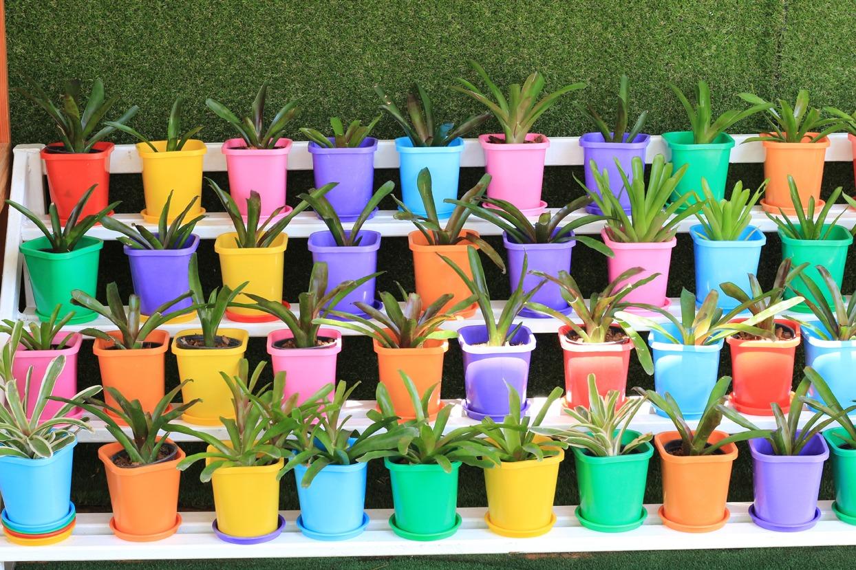 Gros Pot Fleur Plastique des pots dans mon jardin | mon jardin d'idées