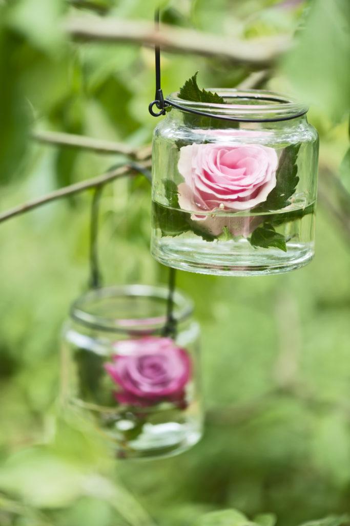 Lumignon rose