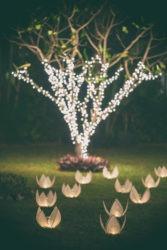 Guirlande éclairage arbre