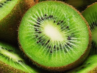 Kiwi hiver