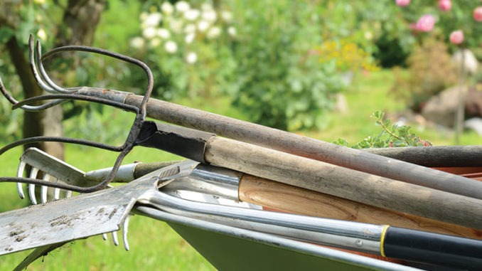 outils-jardin-potager-terre