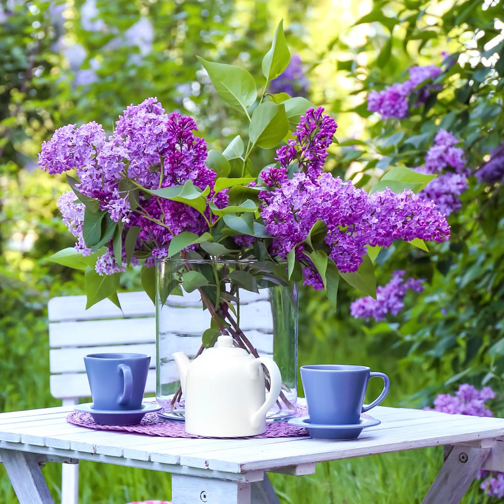 Bouquet de lilas sur une table au jardin