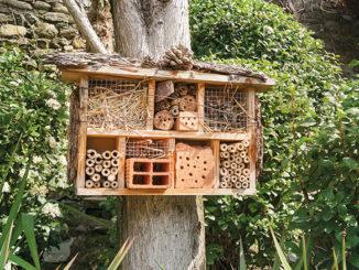 Hotel-a-insecte-au-jardin