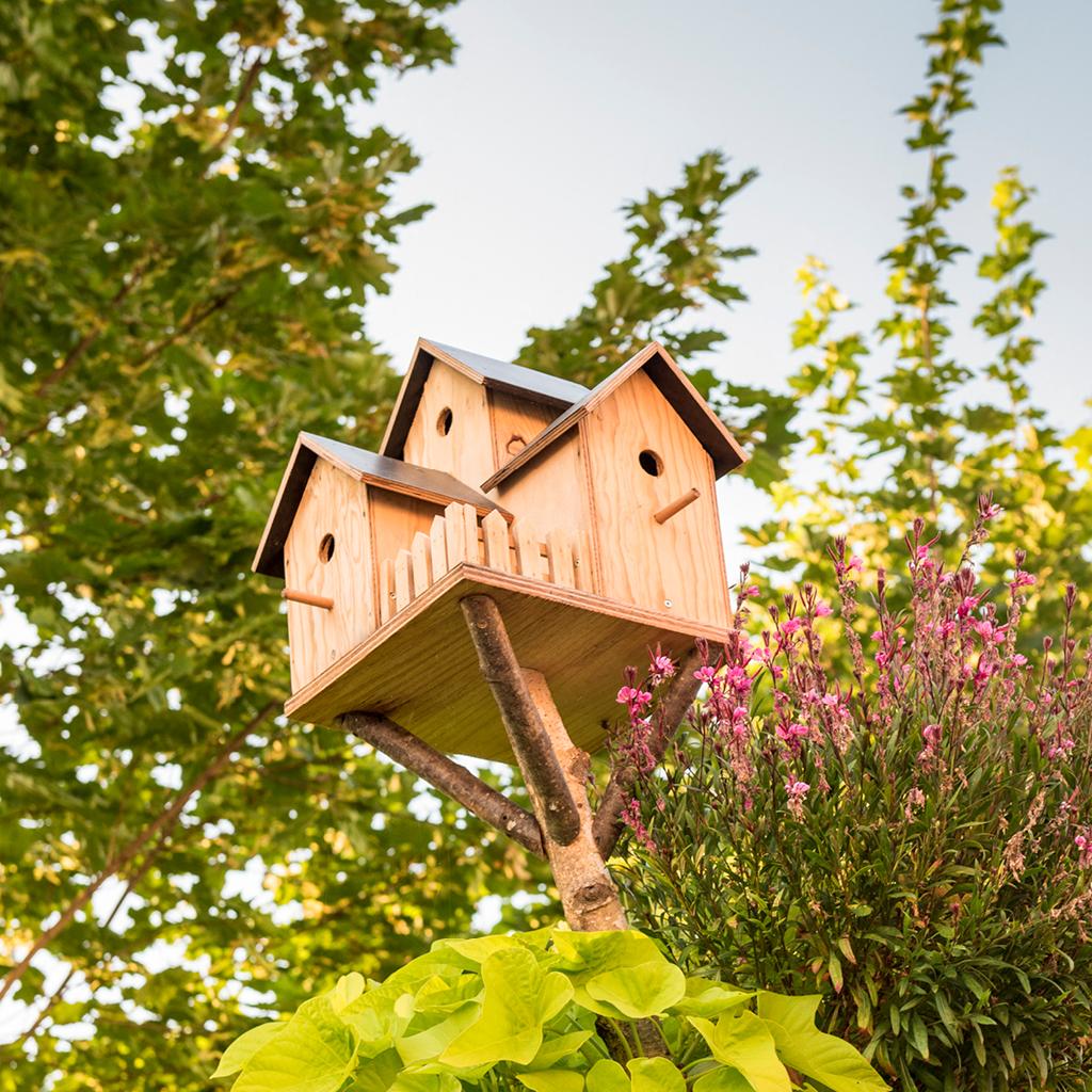 Nichoir oiseaux jardin