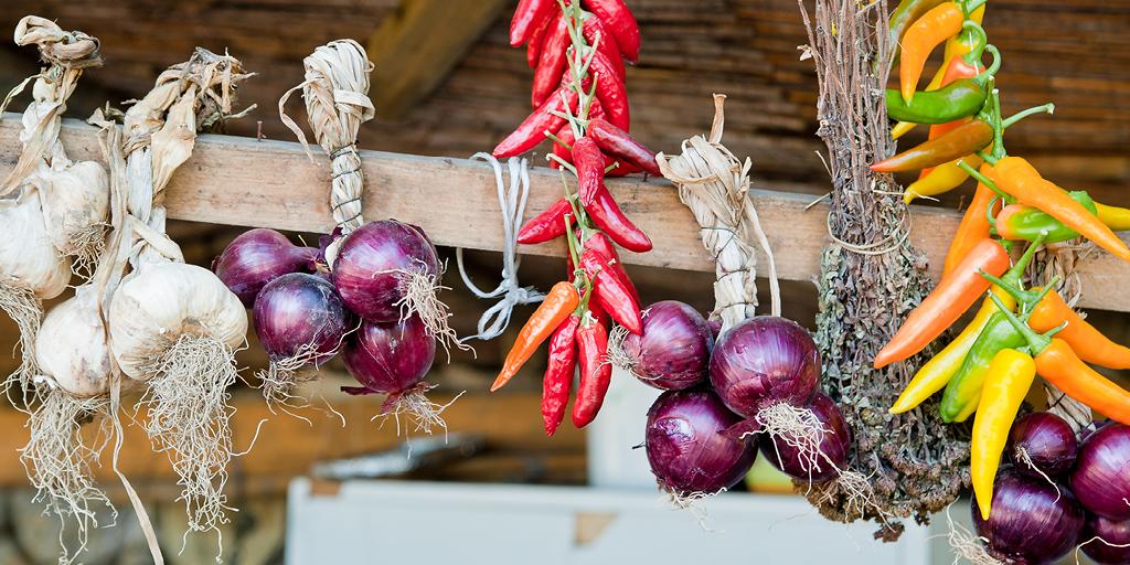 Séchage légumes conservation