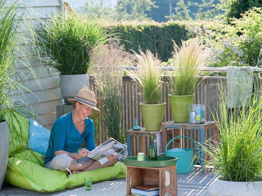 Graminées en pot sur terrasse-jardin sec
