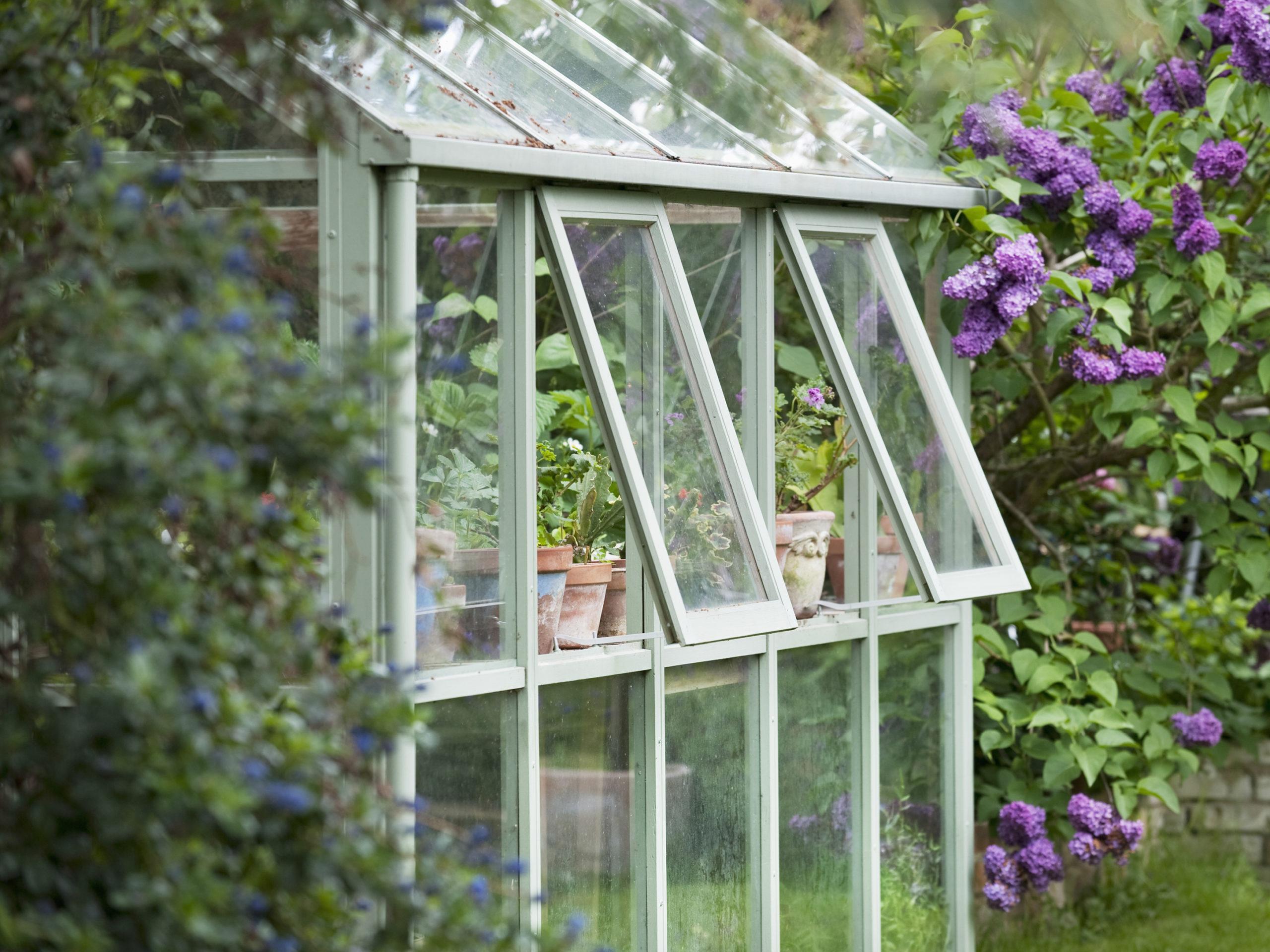 Serre jardin aération fenêtre
