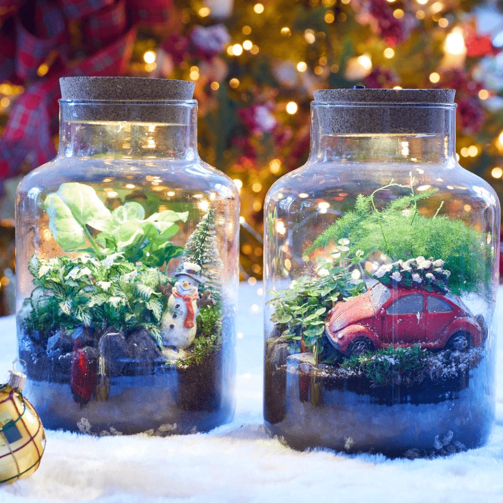 Deco plantes Terrarium Noel