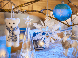 Noel polaire bleu blanc