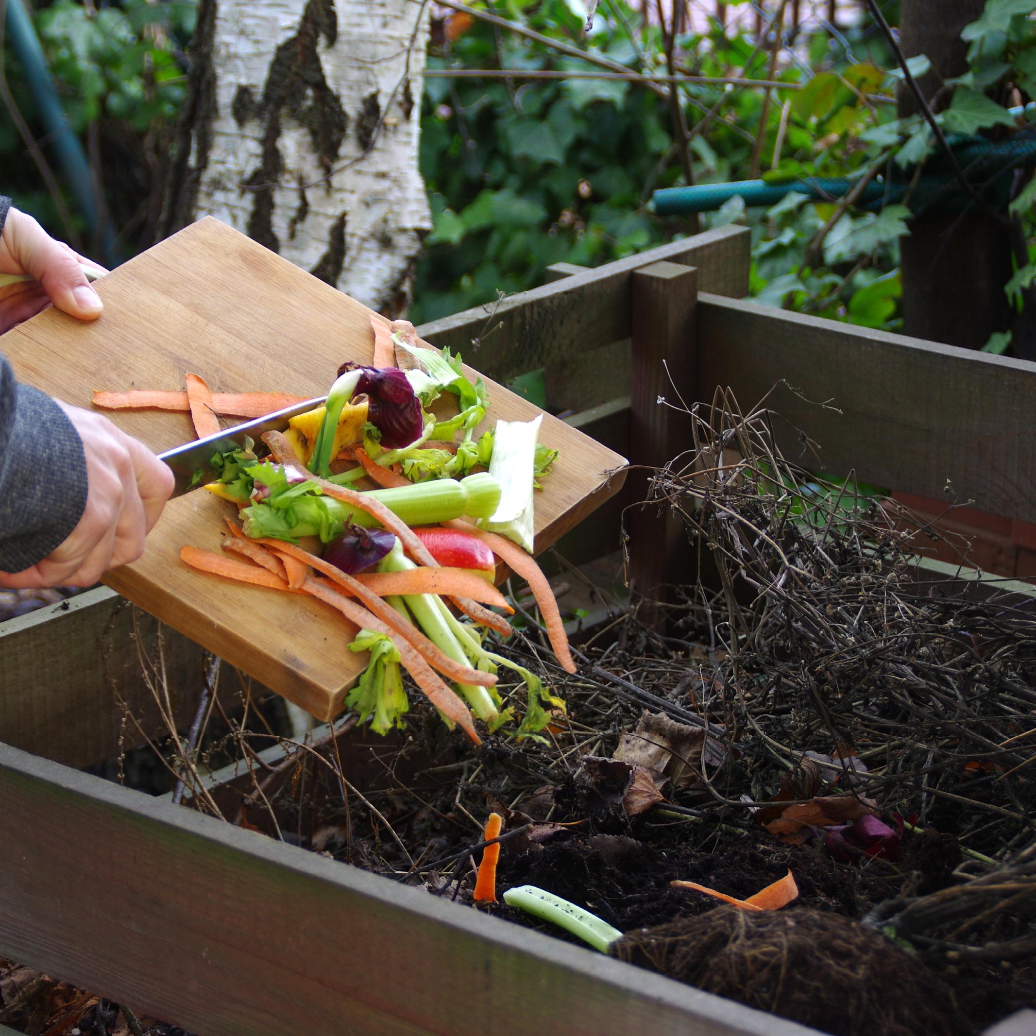 Déchets organiques compost