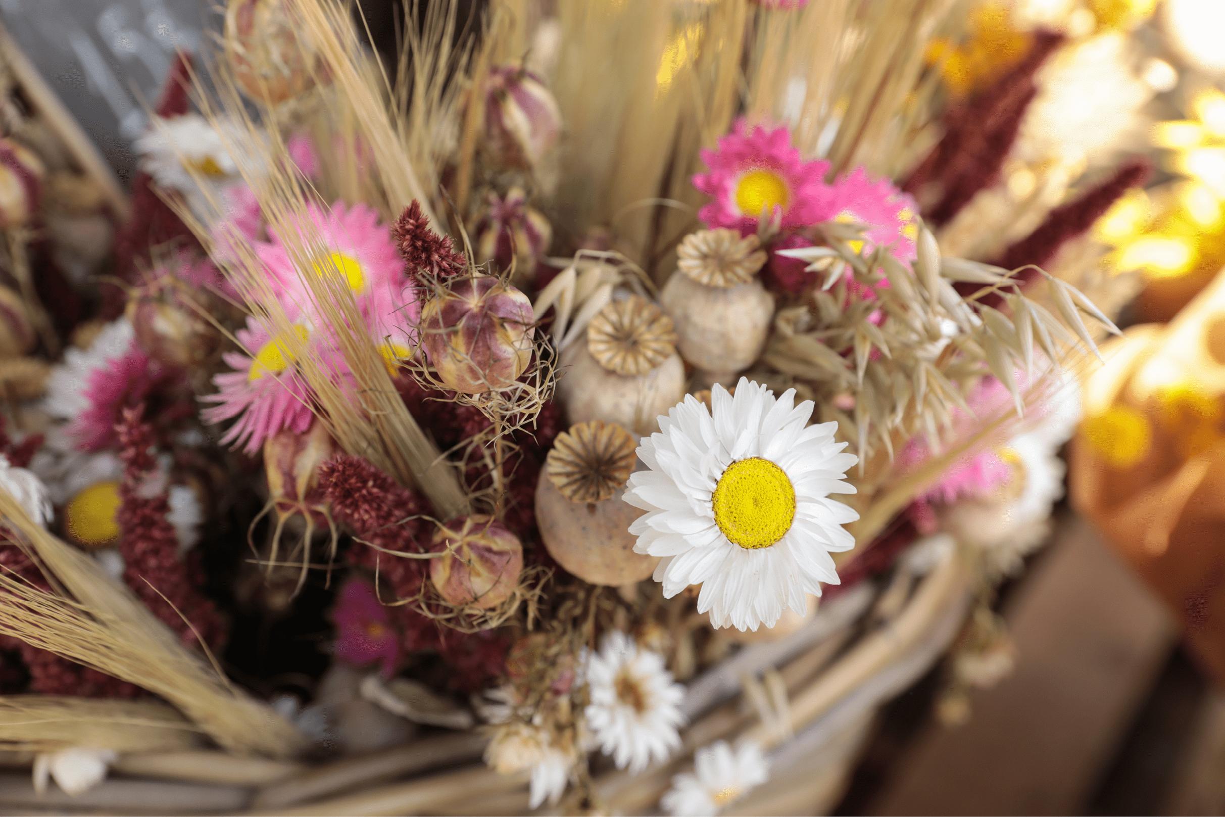 Bouquet fleurs sechees_zoom