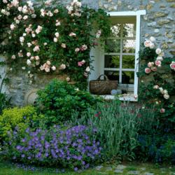 Façade de maison fleuri au printemps